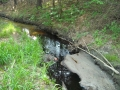 Diesel fuel impact to stream